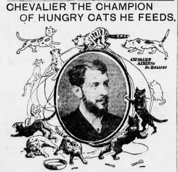 The Chevalier and His Clowder of Cats on Carnegie Hill