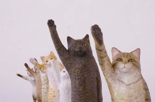 A Lineup of Cats That Ask You For High-Fives