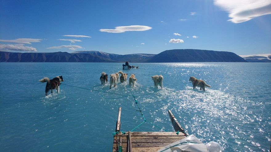 The Arctic Is Melting