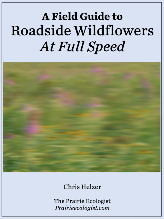 Finally, A Practical Guide for Roadside Wildflower Viewing