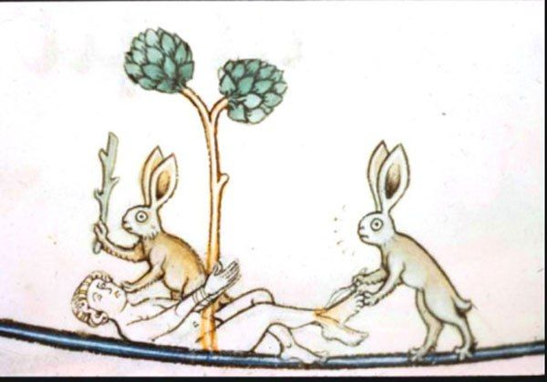 Why So Many Drawings in Medieval Manuscripts Depict Bunnies Going Bad