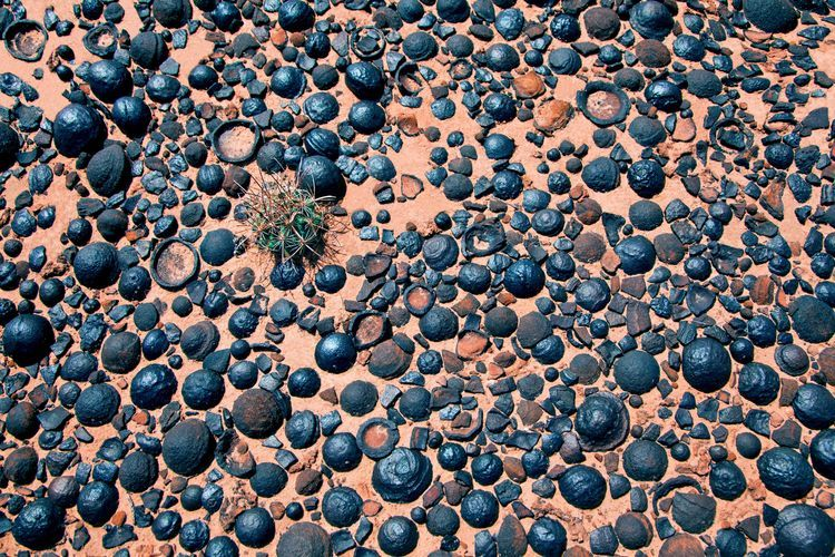 Moqui Marbles, Martian Blueberries, and Past Life on Mars