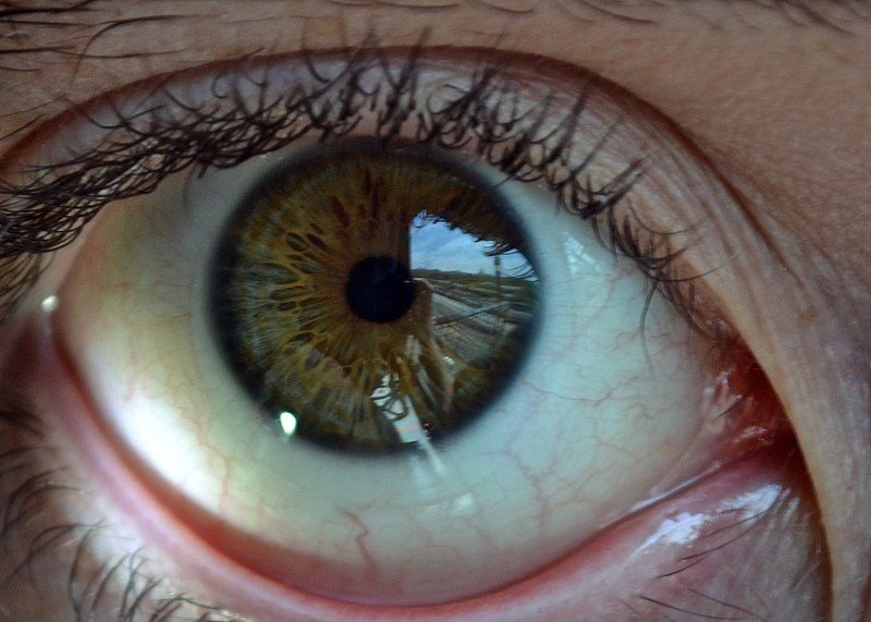 Japanese Man Stalked A Female Pop Star By Looking At The Reflection Of Her Pupils