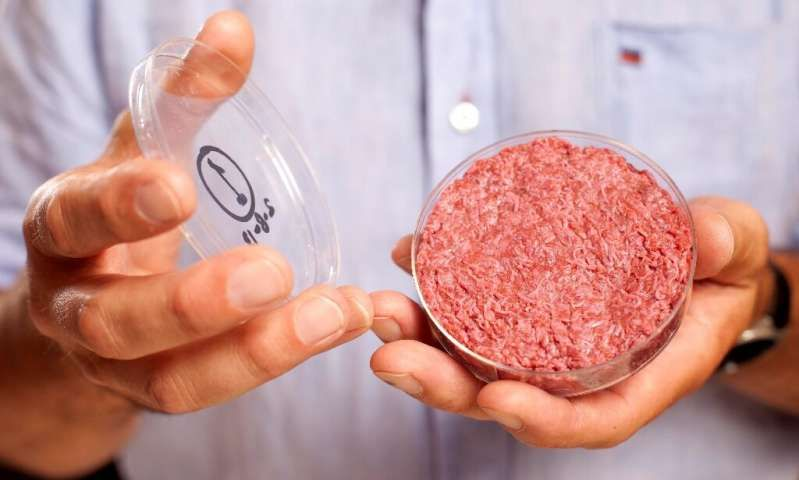 Artificial Meat Made In Space