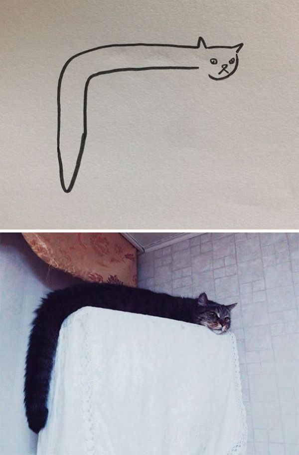 This Creates A New Problem  Cats Often Sleep In Funny Places And Positions,  So The Drawings Come Out Looking More Like A Caterpillar Than A Cat, ...