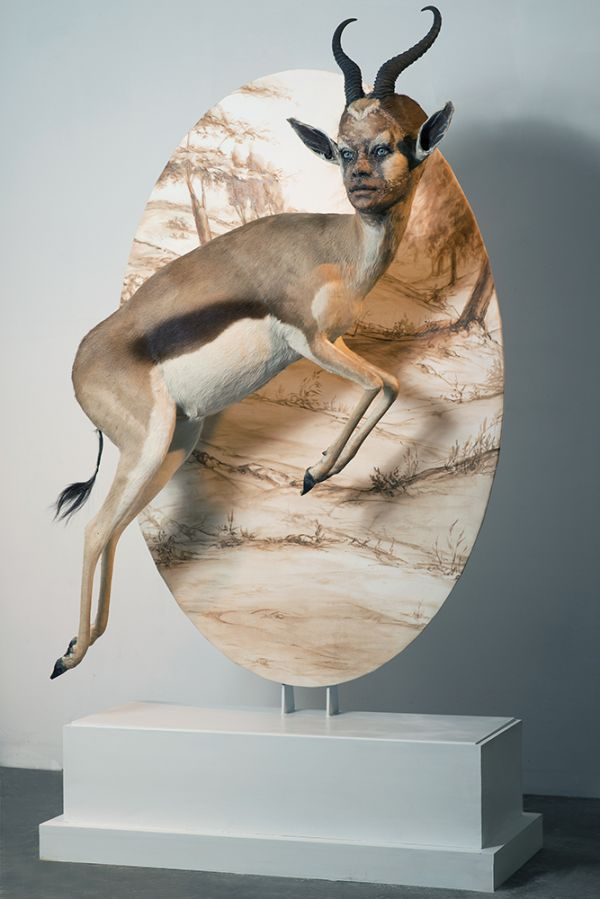 taxidermy with human faces neatorama