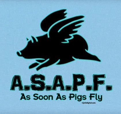 When Pigs Fly Neatorama