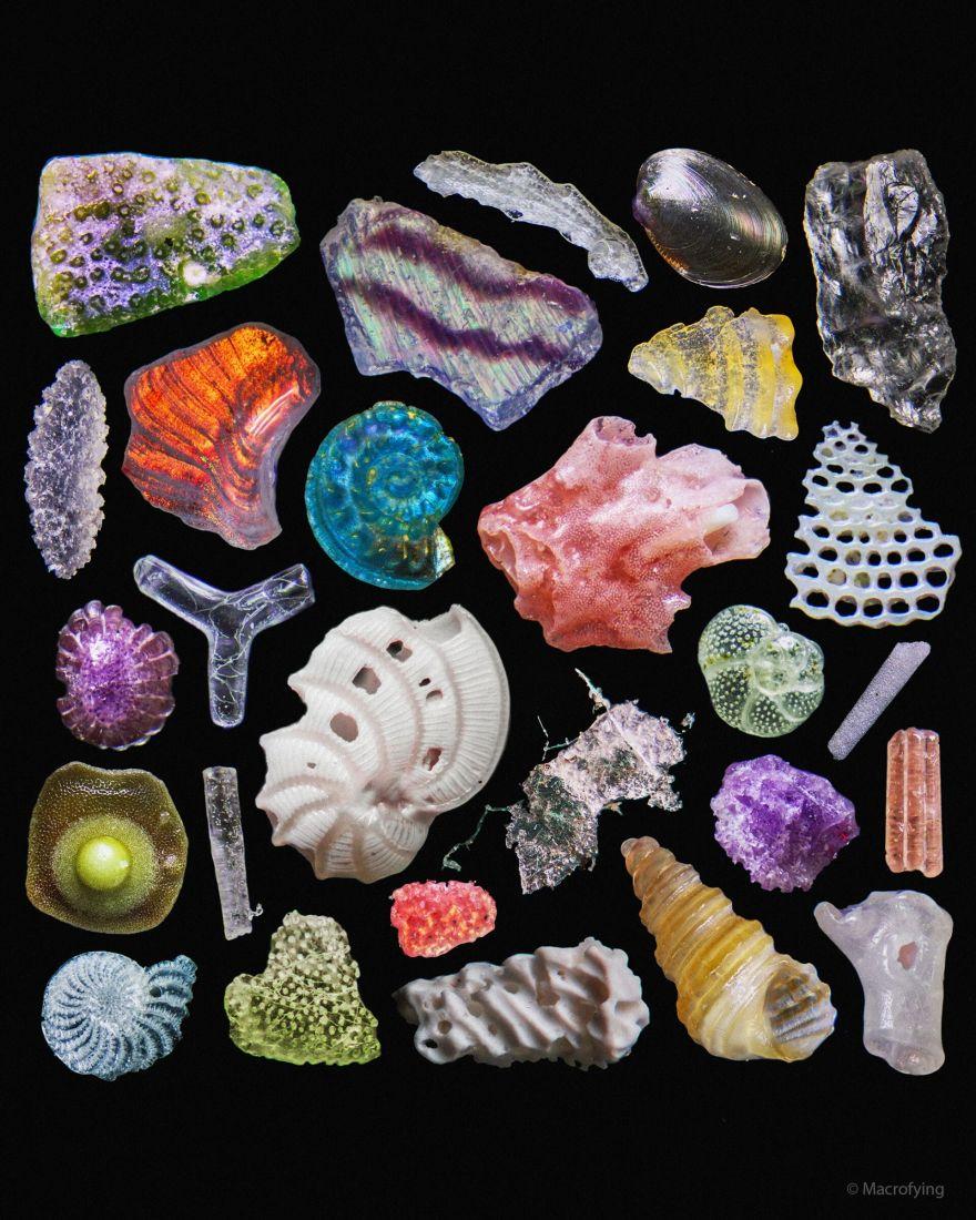 Shells, Coral, Quartz, Beach Sand, and Microplastic
