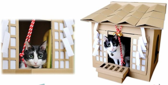 Its A Cardboard Shinto Shrine For Cats