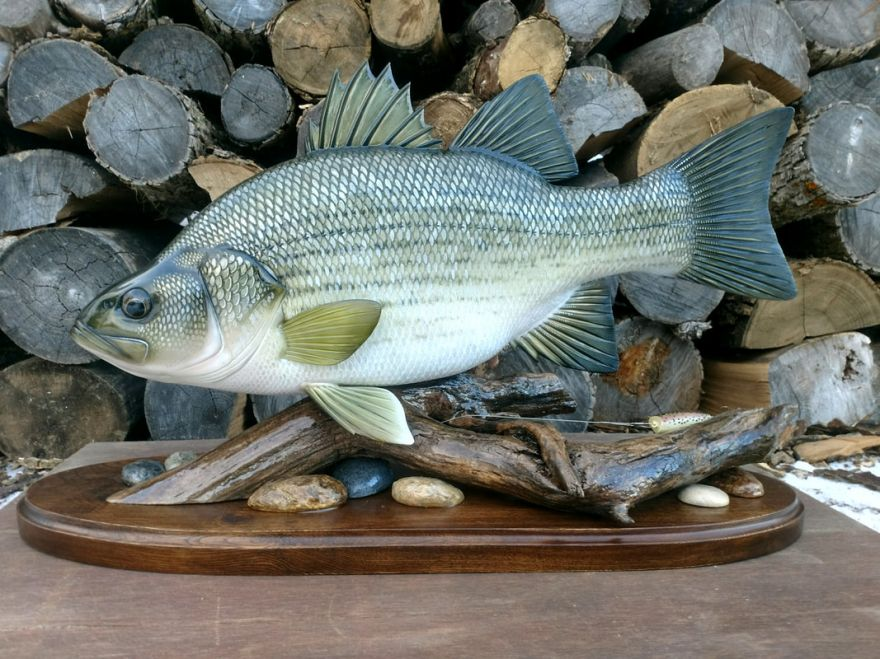 A Collection of Amazingly Crafted Fish Decoys