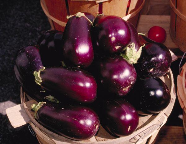 Eggplant Parmigiana Hallelujah
