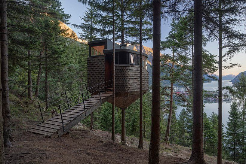this-treehouse-is-attached-to-a-pine-tree
