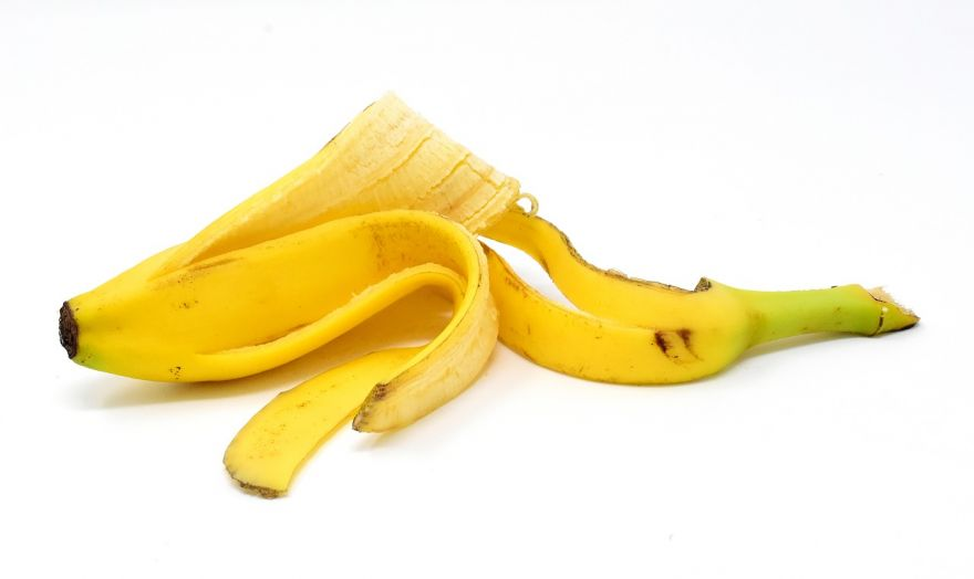 Why Throwing Banana Peels on the Ground Is Bad For The Environment