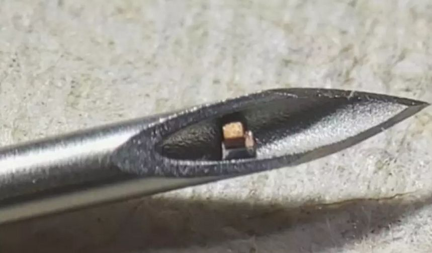 This Small Single Chip Can Be Injected In Your Body