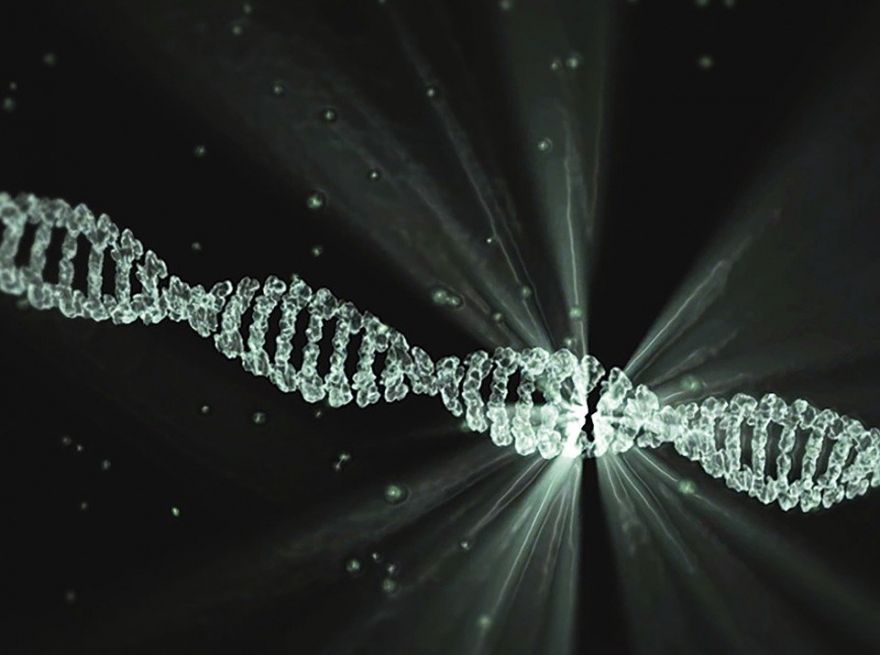 Is Our DNA The Key To Living Longer?