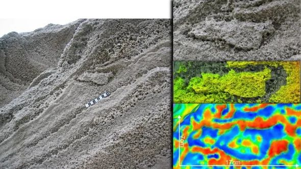 The Last Neanderthal Footprint?