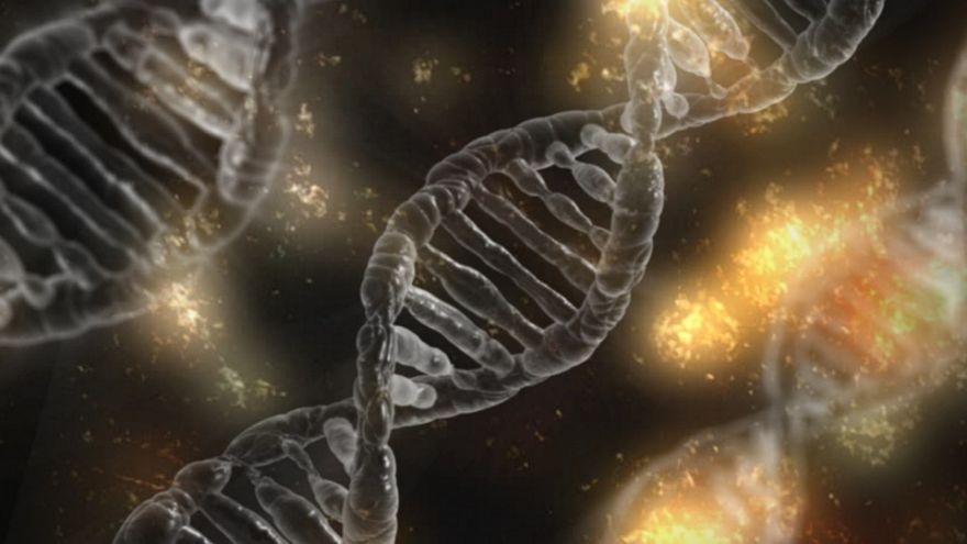 Study Reveals Our Genome's Darker Parts