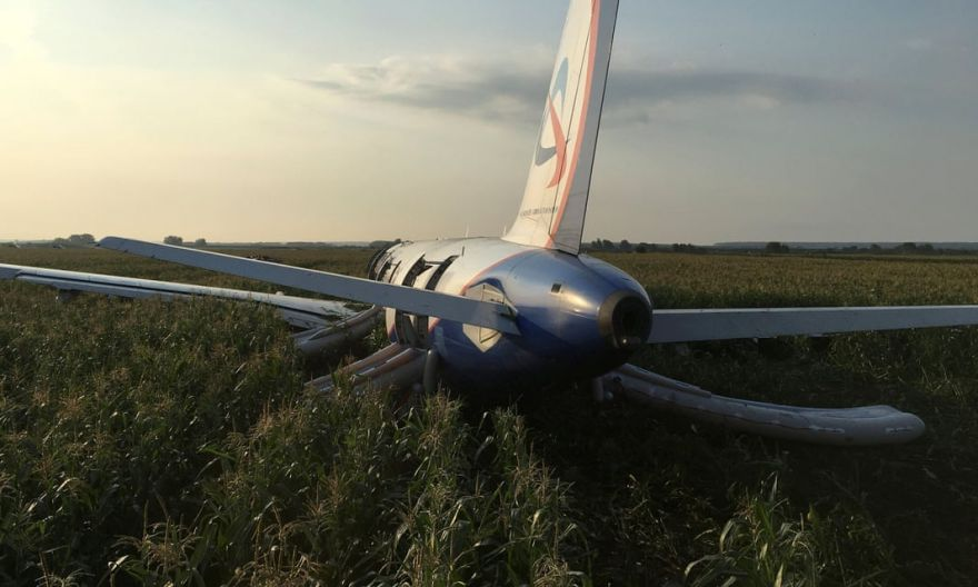 """""""The Miracle Over Ramensk"""": A Plane That Struck a Flock of Gulls Lands Safely on Cornfield"""